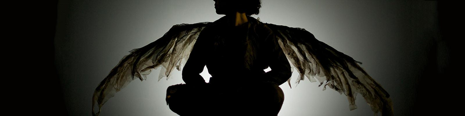 header-bev_wings
